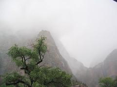 Zion Mist