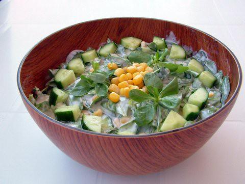 Semizotu Salatası-1
