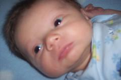 Closeup Nathan