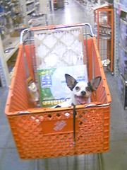 On sale at Home Depot