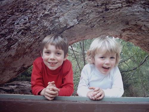 Patrick and Angus atop a reptile enclosure