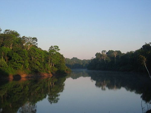 Morning in the Amazon...   by markg6