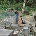 つなぎに使うガジュマルの木灰を作っている
