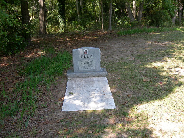 Fred the Town Dog Gravesite