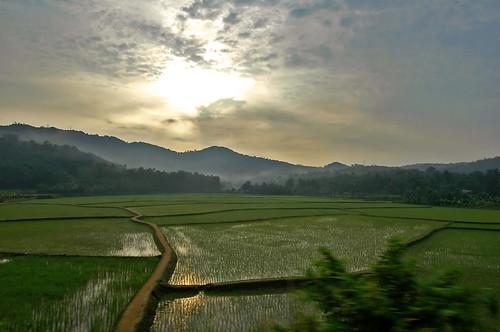 train dawn nikond70 kerala fields nikon1224mmf4 kerala06