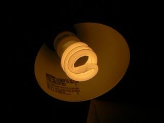 Compact fluorescent lamp | by Keenan Pepper