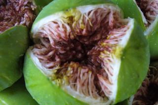 figs | by sevi8mobi