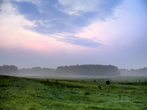 usa sun fog rural sunrise landscape scenery country alabama foggy pasture ethereal
