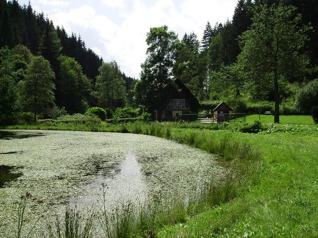 Teich und Mühle