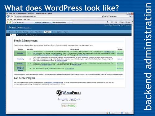 What does WordPress look like?