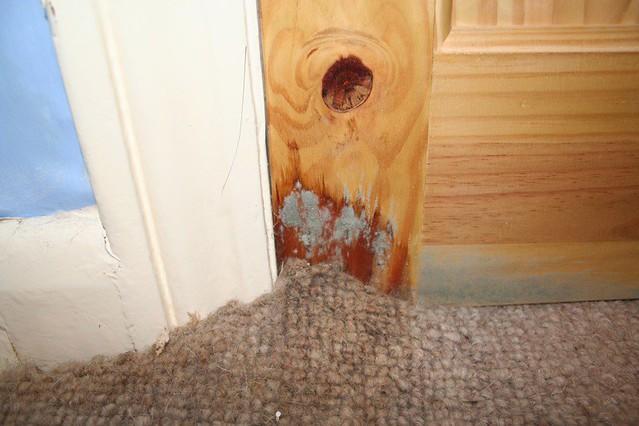 San Diego Carpet Water Damage Restoration