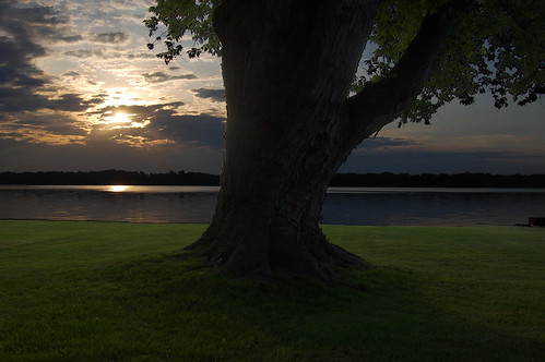 lake tree photoshop sunrise