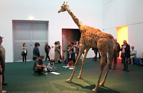 documenta 12 | Peter Friedl / The Zoo Story | 2007 | documenta-Halle | by A-C-K