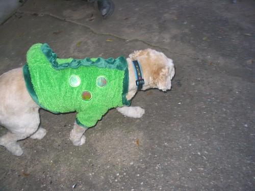 Dog in a Dinosaur Costume   by DanCentury