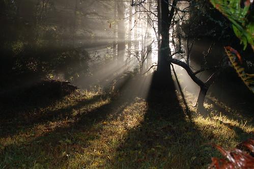 california county ca copyright david sunrise humboldt photos surreal anderson photographs points vanishing eureka utatafeature 111406 impressedbeauty