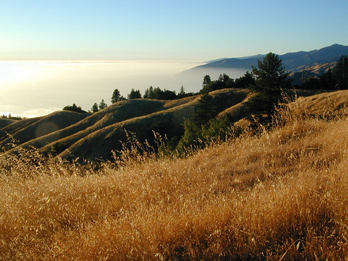 Big Sur Ridges