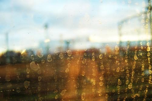 raintracks | by 0olong