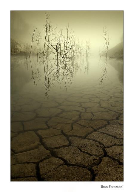 Niebla y silencio II