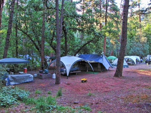 campground detail: Tent City | by rovingmagpie