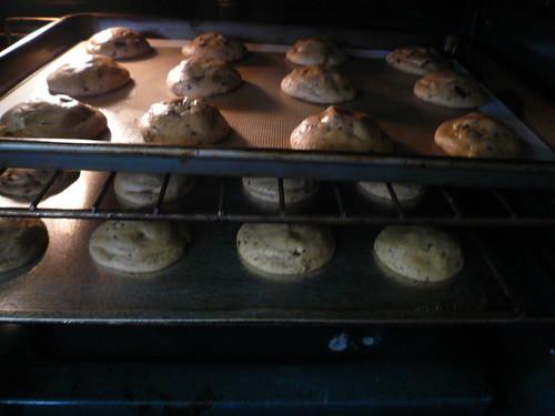 Making Cookies Step 19   by Rex Roof
