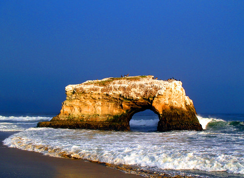 california blue sea usa santacruz seascape storm beach birds stone gold arch naturalbridges supershot worldbest anawesomeshot superaplus aplusphoto naturewatcher