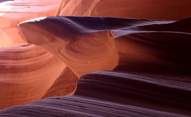 Interplay of light, rock, and nature inside of a slot canyon