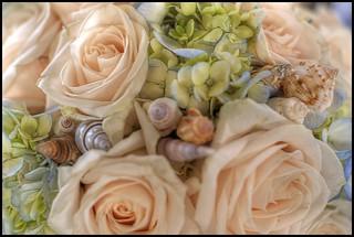HDR Bouquet | by Corey Ann
