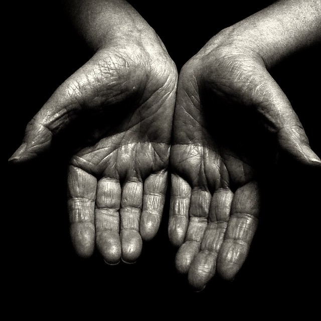 the palm of the hand