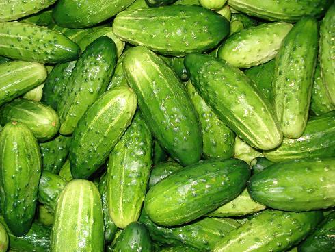 Cucumbers | by Dorocia