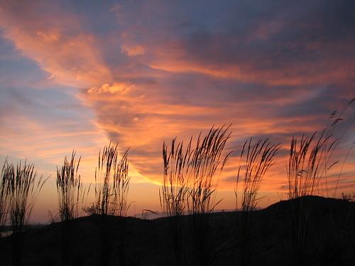 light sunset shadow sky grass clouds bravo universityplace supershot flickrstars mywinners anawesomeshot aplusphoto chambersbaygoldcourse diamondclassphotographer flickrdiamond excellentphotographerawards mistymissschristie