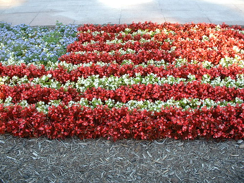 US flag in flowers   by Betty B