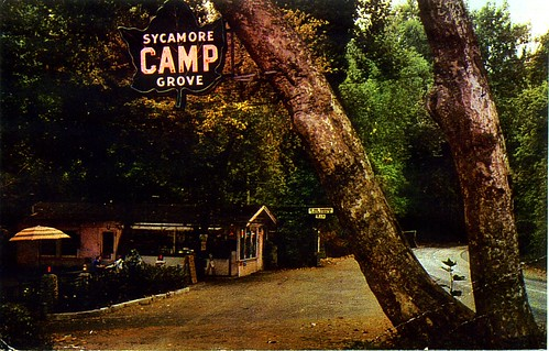 Sycamore Grove Camp | by denisecastellucci