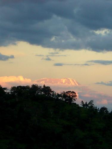 kilimanjaro tanzania jan arusha