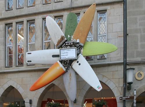 Blume für Münster