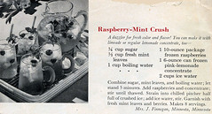 Beverage - Raspberry Mint Crush HM0013   by Eudaemonius