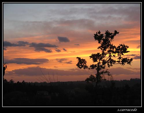 atardecer rojo galicia cielo nubes infierno carballo roble togetlate rivadulla ostrellina