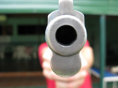 IMG_9312 Gun | by Darren Walsh
