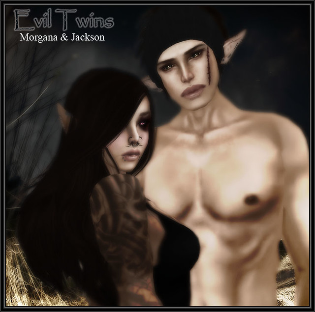 Second Life Twins