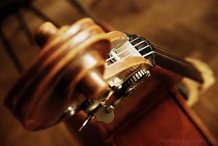 double bass | by Mariusz_Kucharczyk