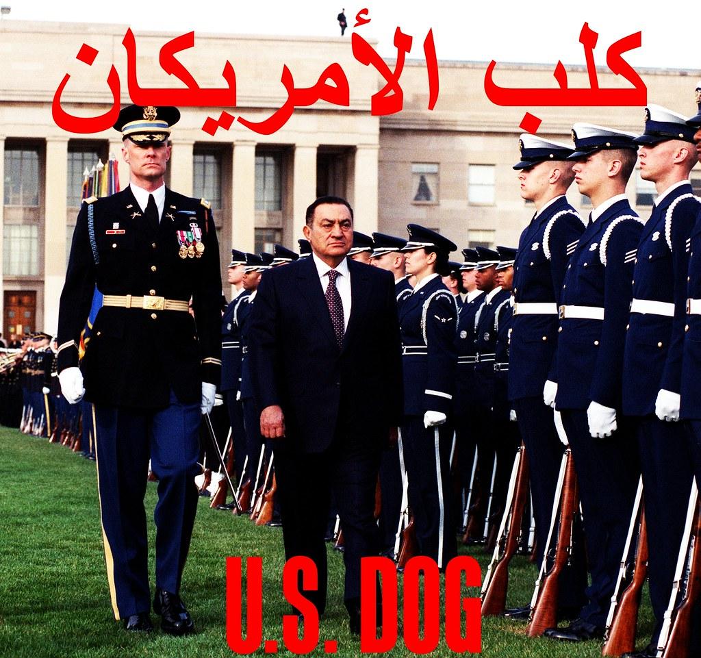 U.S. Dog كلب الأمريكان