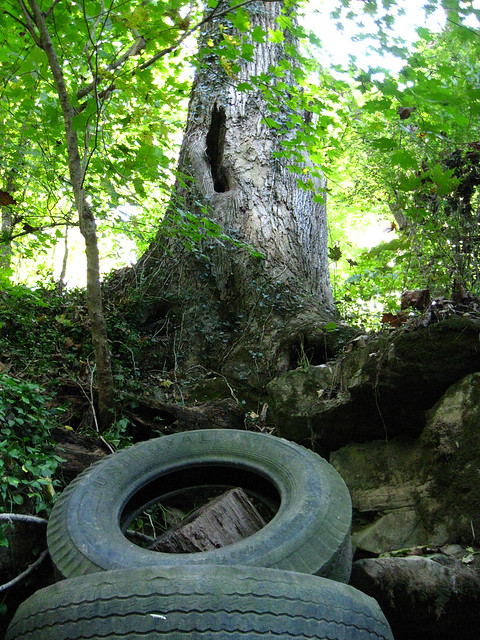 Tires, Old Sonic Sink, Sparta, TN