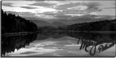 Acadia Reflections