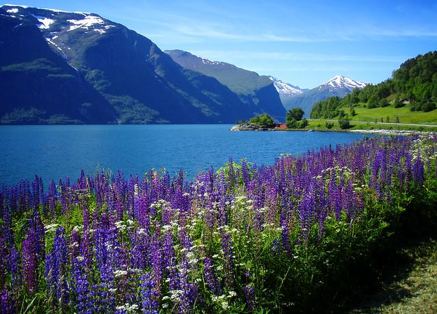 Romsdalsfjorden #2 (landskap Norge)