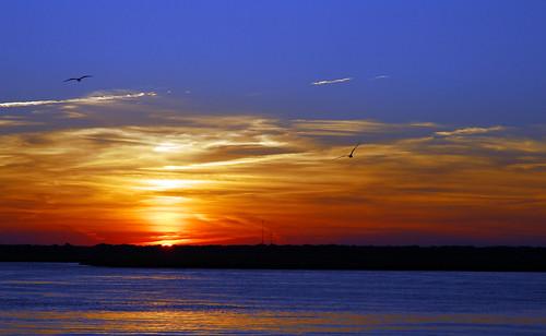 blue sunset red sky orange usa sun reflection bird water night geotagged newjersey twilight d200 gotosleep anawesomeshot colorsofthesun