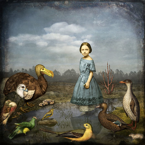 [ T ] Maggie Taylor - A Caucus-Race (Alice in Wonderland) (2007)
