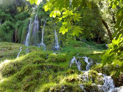 Jardín de agua