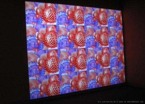 documenta 12 | Churchill Madikida / Virus | 2005 | Neue Galerie | by A-C-K