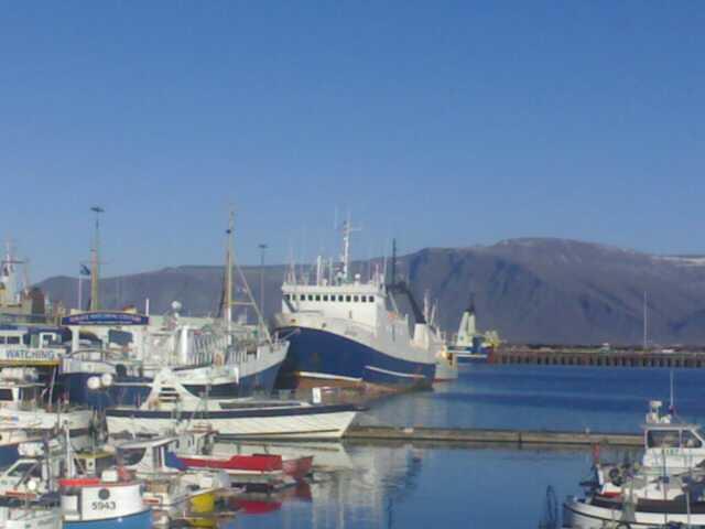 Port of Reykjavík