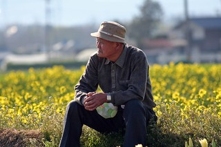old man near tulips | by TruShu