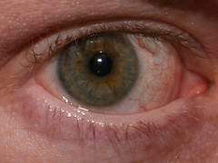 Another close-up of my eye. | by slworking2